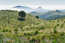 Fotonomaden Landschaft Mallorca