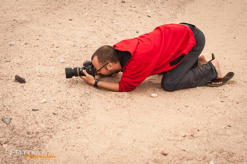 fotonomaden-markus-chamaeleon-foto-safari