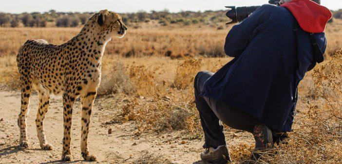 Namibia – Fotoreise selbst organisieren