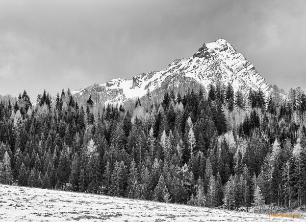 winter-fotografie-workshop-kalkalpen- 001-2