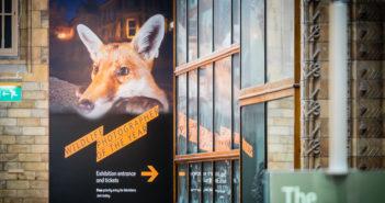 Wildlife-photographer-2016-London