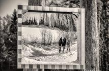 Winterwanderung im Waldviertel bei Schloss Rosenau