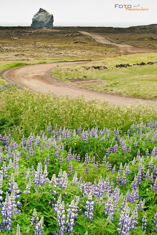 Bildbeispiel Island Landschaft Hochformat bearbeitet
