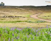 Bildbesprechung Nr. 1 Landschaft Island
