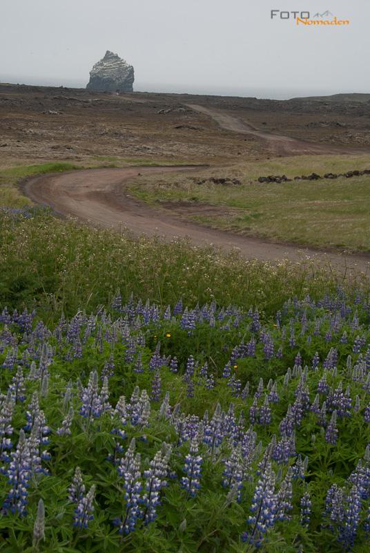 Fotonomaden Bildbesprechung Hochformat Island unbearbeitet