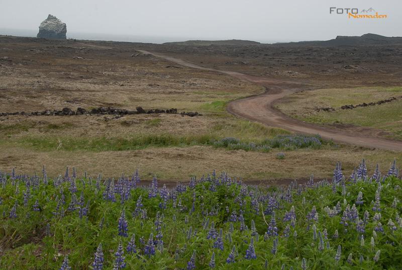 Bildbesprechung Querformat Landschaft Island