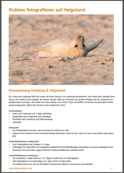 E-Book Robben fotografieren