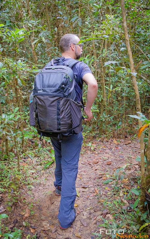 Mindshift Backlight 36l im Regenwald