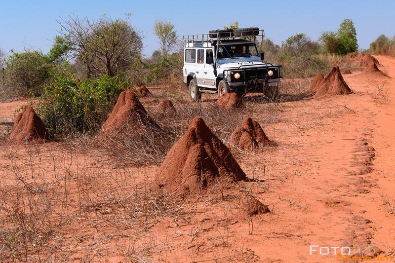 Madagaskar Reiseroute Fotonomaden Termitenhuegel