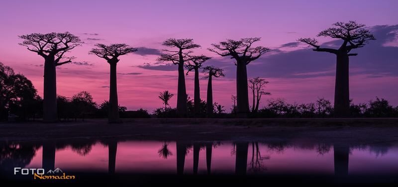 Madagaskar Reiseroute Fotonomaden Baobaballee