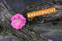 Fotonomaden Workshop Ausgebucht