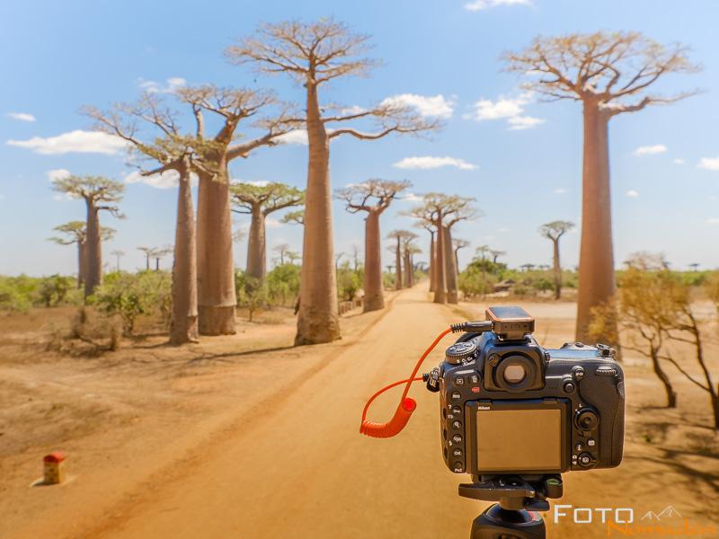 Miops Mobile Remote Test auf Baobab Allee