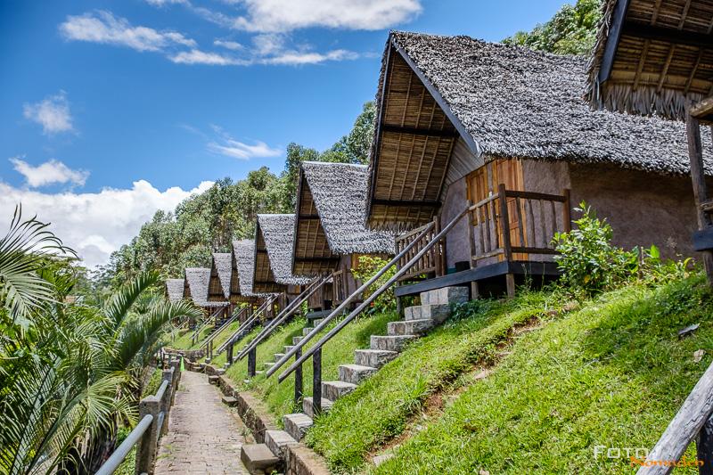 Fotonomaden Madagaskar Fotoreise Feon'ny ala Lodge