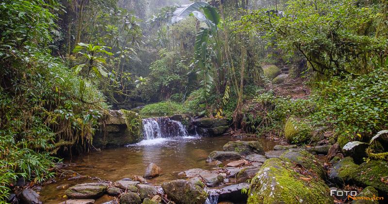 Fotonomaden Madagaskar Fotoreise Ranomafana Nationalpark
