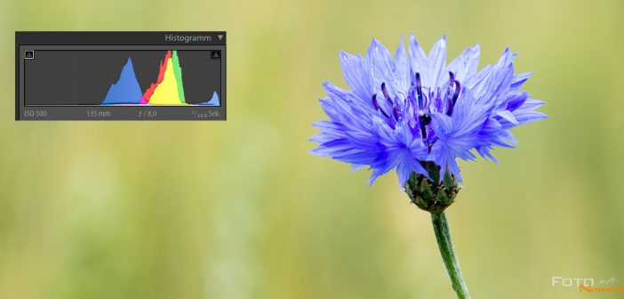 Fotonomaden Richtig belichten mit Histogramm