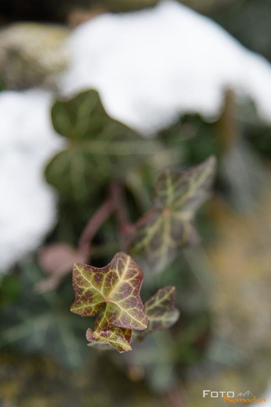 Fotonomaden-Winterbilder-stoerende-Blitzer
