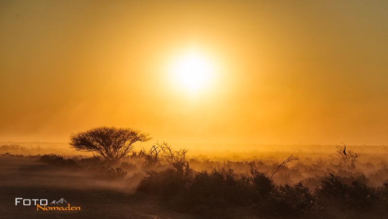 fotonomaden namibia rundreise etosha sonnenuntergang