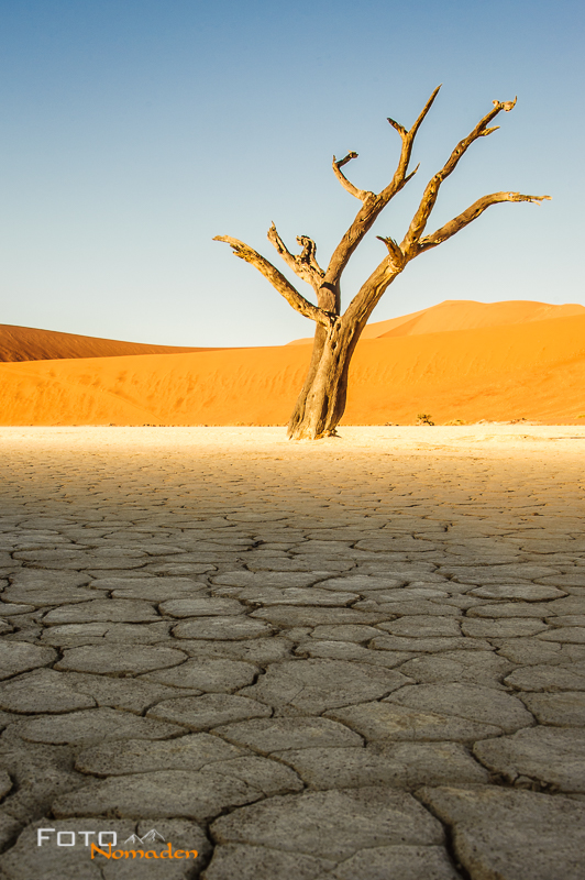 Fotonomaden Namibia Reiseroute Sossusvlei Dead Vlei