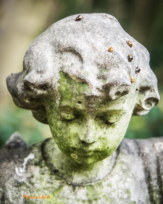 Fotonomaden Querformat oder Hochformat Stein Kopf