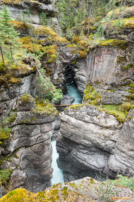 Fotonomaden Foto-Locations West-Kanada Maligne Canyon Trail