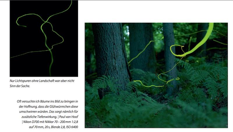Praxisbuch außergewöhnliche Naturfotografie Glühwürmchen