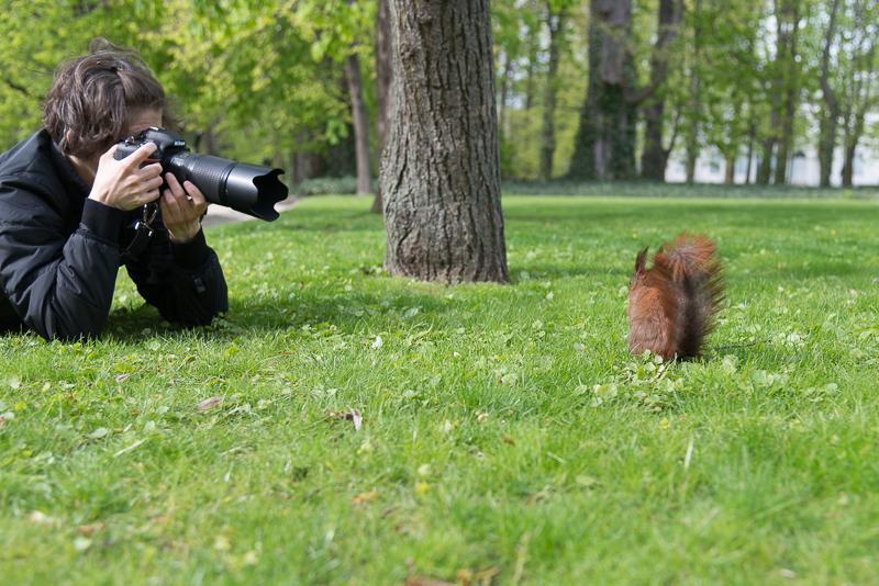 fotonomaden tierfotografie
