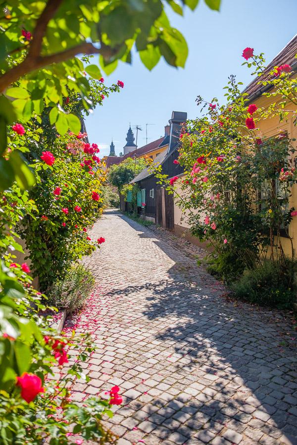 Alte Häuschen in Visby - Gotland/Schweden Fotonomaden.com