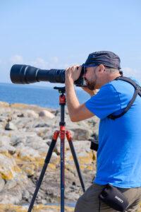 Stativ hilft beim Fotografieren der Hirsche