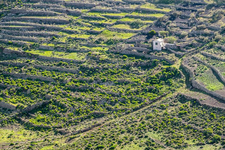 Mauern aus Lavagestein in Felshang, Lanzarote