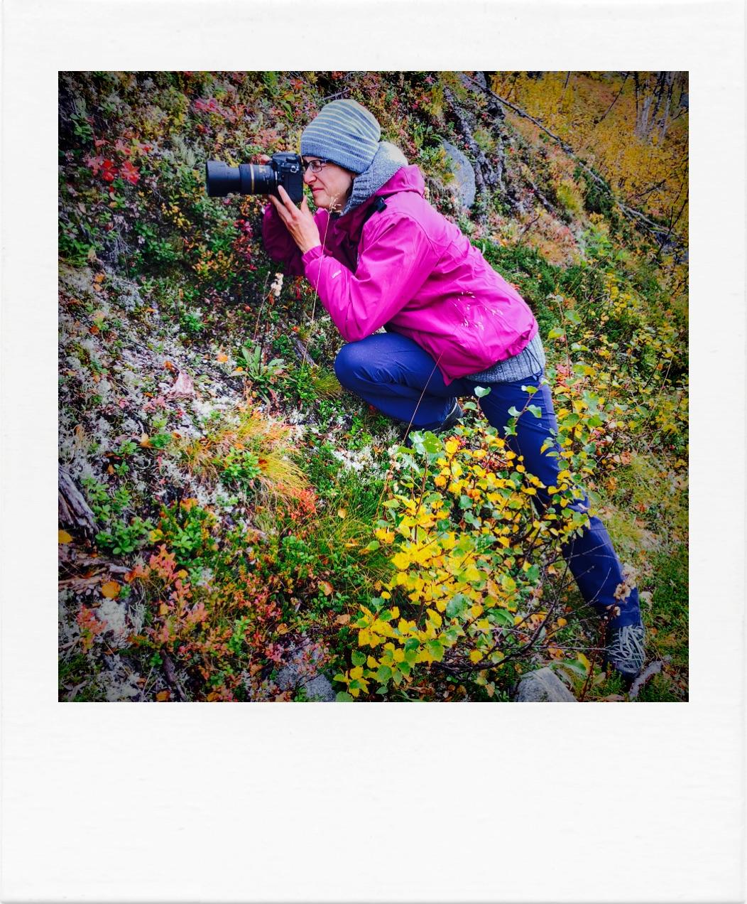 Fotografin nimmt kleine Büsche auf