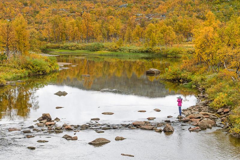 Herbstwald und Wasser, Ruska, Lappland