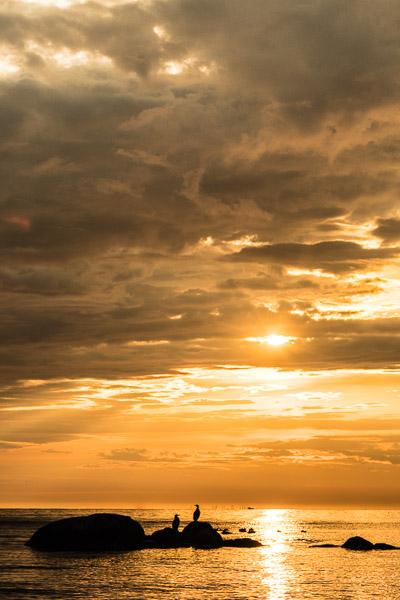 Sonnenuntergang mit Wolken und Felsen mit Vögeln