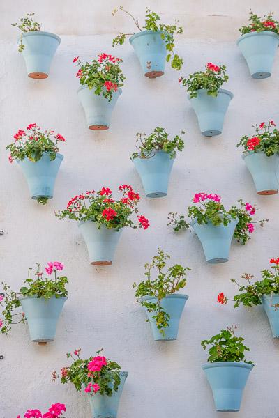 Blumentöpfe in Patio in Córdoba