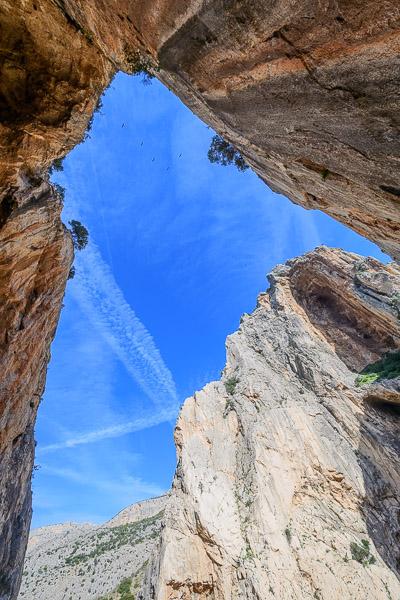 Blick nach oben in der Schlucht am Caminito del Rey in Andalusien