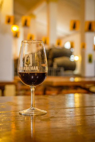Sherry-Glas in Sandeman Bodega, Andalusien