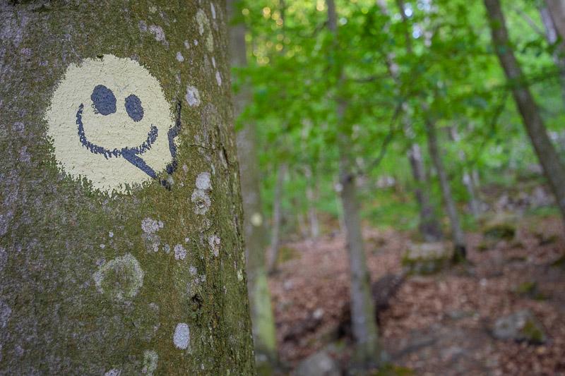 Smiley auf Baumstamm