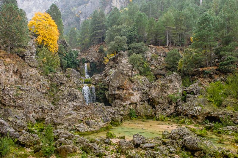 Herbstwald mit Wasserfall bei Schlechtwetter