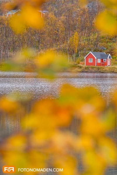 1. Versuch eines Fotos von Herbstlaub mit Haus