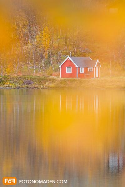 Rotes Holzhaus mit gelbem Herbstlaub