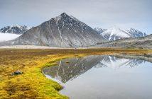 Bergfotografie - Berg mit Spiegelung und gelbem Gras
