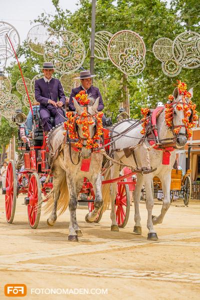 Bildgestaltung mit Automatik: Geschmückte Pferdekutsche Andalusien