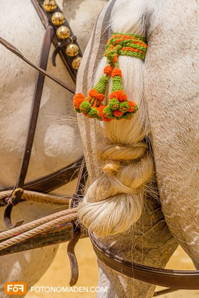 Bildgestaltung mit Automatik, geschmückter Pferdeschweif