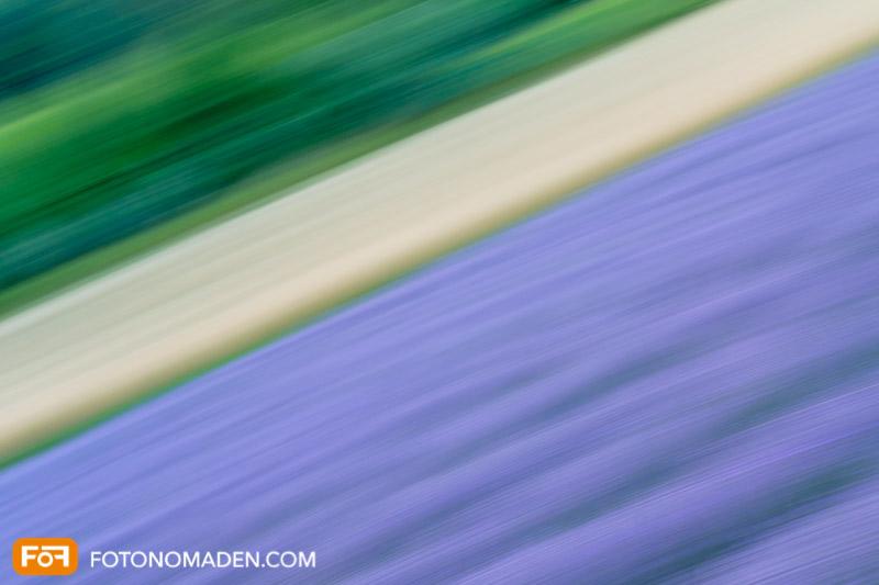 Bildgestaltung im manuellen Modus: Panning Lavendelfeld
