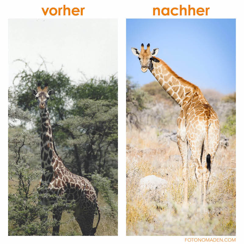 Fotografieren lernen - vorher/nachher