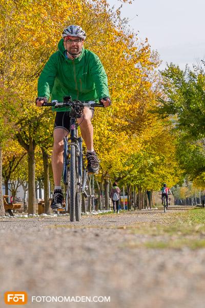 Mann auf Rad vor gelben Herbstbäumen