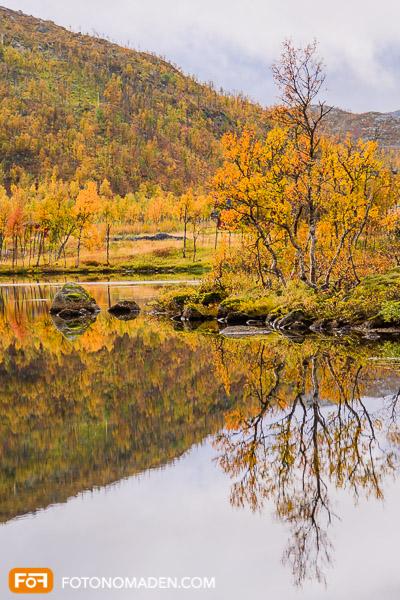 Schöne Herbstbilder: Bunter Herbstwald spiegelt sich im Wasser