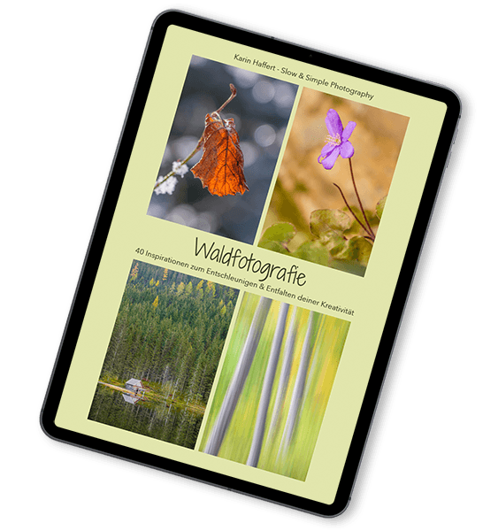 Waldfotografie E-Book