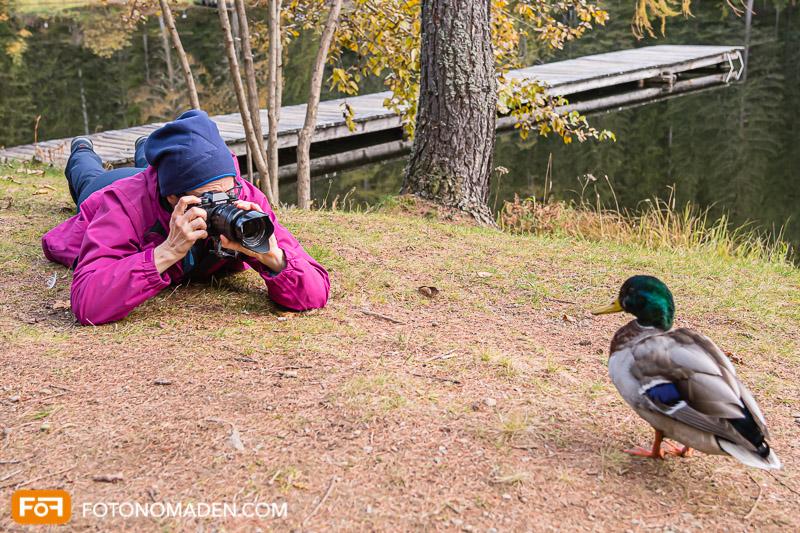 Fotografin liegt und fotografiert Ente