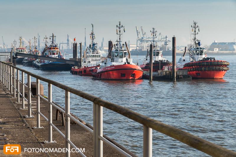 Foto Reiseführer Hamburg - Schiffe im Hafen