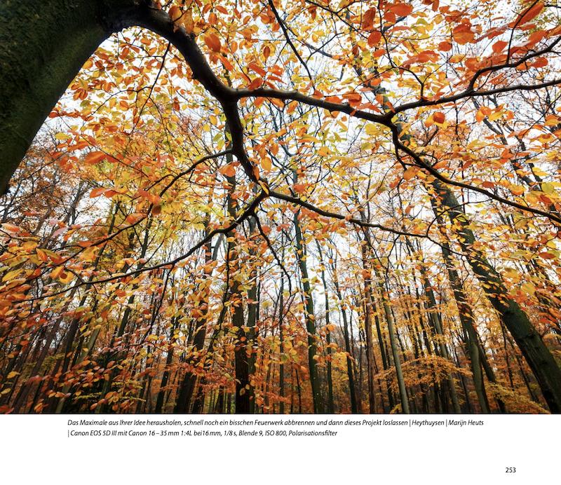 Fotobeispiel Naturfotografie durchs ganze Jahr